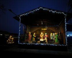Vánoční otevírací doba KOVOZOO